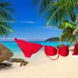 Santa hat and red bikini on the tropical beach — Stock Photo