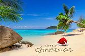 Frohe weihnachten von den tropen — Stockfoto