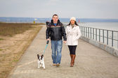 Couple on the walk with dog — Stock Photo