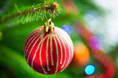 Beautiful bauble on Christmas tree — Stock Photo