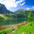 Eye of the Sea lake in Tatra mountains — Stock Photo #39459599