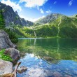 Eye of the Sea lake in Tatra mountains — Stock Photo #39459615