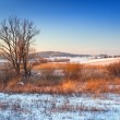Winter sunset over snowy meadow — Stock Photo