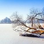 Winter scenery of frozen lake — Stock Photo #40348925