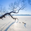 Winter scenery of frozen lake — Stock Photo