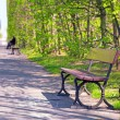 Beautiful alley with empty bench in the park — Stock Photo #45917675