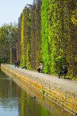 In primavera il parco oliwski, danzica — Foto Stock