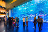 People in front of the Oceanarium inside Dubai Mall. — Stock Photo
