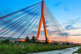 Cable stayed bridge in Gdansk — Stock Photo