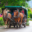 Horse-drawn carriage at the Neuschwanstein Castle — Stock Photo #50166491