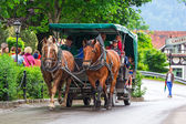 Horse-drawn carriage at the Neuschwanstein Castle — Stock Photo