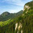 Summer landscape in the Bavarian Alps — Stock Photo