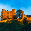 Hohenschwangau Castle in Bavarian Alps — Stock Photo #50459841