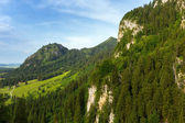 Summer landscape in the Bavarian Alps — Stockfoto