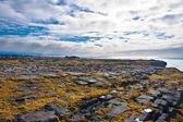Cliffs of Aran islands in Ireland — Stock Photo