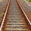 Railroad tracks — Stock Photo #13888078