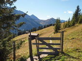 Trail in the alps — Foto Stock