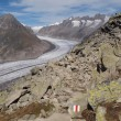 Great Aletsch Glacier — Foto Stock