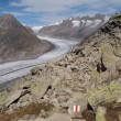 Foto Stock: Great Aletsch Glacier