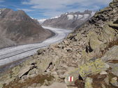 Great Aletsch Glacier — Stock Photo