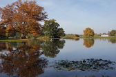 Autumnal reflection in Wörlitz — Stock Photo
