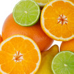 Citrus Fruits isolated on white background — Stock Photo #49606861