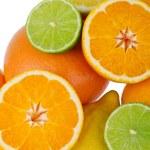 Citrus Fruits isolated on white background — Stock Photo