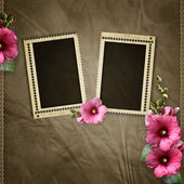 Stamp frames over old textured background — Stock Photo