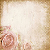 Paper background with rose — Stock Photo