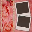 Beautiful wedding background withroses banner and frames — Stock Photo #24889365