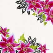 Pink bridal lilies border on white background — Stock Photo