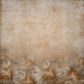 Greeting or invitation card background with lily flowers — Stock Photo
