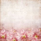 Greeting or invitation card background with pink lily flowers — Stock Photo