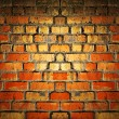 Old brick wall background — Photo