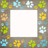 Animal paws  frame — Stock Photo