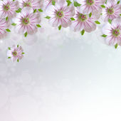 Border of white - pink  flower  on blue   background — 图库照片