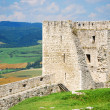 Spissky Castle, Slovakia — Stock Photo #18312791