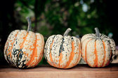 Autumn pumpkins on wooden board — Foto de Stock