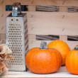 Still life from autumn pumpkins — Stock Photo