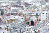 Winter garden and roofs of Ledebursky palace, Prague — Stock Photo
