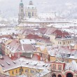 Постер, плакат: Roofs of Ledebursky palace and St Nicolas church