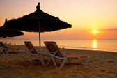 Sunrise over the parasol on the beach, Tunisia — Stock Photo