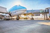 Korean Air Boeing 747 on the aircraft parking stand in Vaclav Ha — Stock Photo