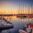 Marina with docked yachts at sunset — Stock Photo