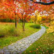 Pathway in autumn — Stock Photo