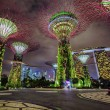 Night view of Gardens by the Bay, Singapore — Stock Photo