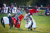 Grand master fights on horseback. Battle of Grunwald festival — Stock Photo