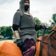 Armored companion, horsemen - KLUSHINO — Stock Photo