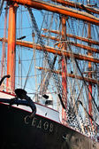 Tall ship Sedov rigging — Stock Photo
