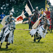 Teutonic Knights — Stock Photo #32608737